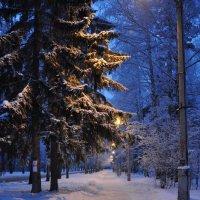 Алея :: Алексей http://fotokto.ru/id148151Морозов