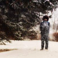 Снежный февраль :: Ольга Губанова Столбцы