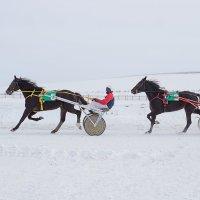 Сибирское подворье :: Алина Меркурьева