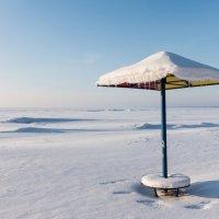 Зимний пляж :: Владимир Засимов