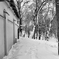 Зима :: Евгений Верзилин