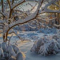 После снегопада. /Москва. Сокольники./ :: Василий Ярославцев