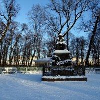 Зима в Летнем саду :: Наталия Короткова