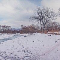 река Шиненгоу, Партизанский район, Приморский край :: Эдуард Куклин