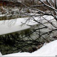 Зимним днём в парке :: Нина Бутко