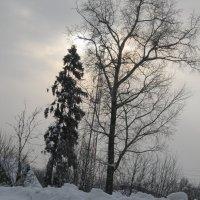 Зимний пейзаж :: Smit Maikl