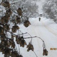 Зимняя дорога :: Smit Maikl