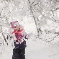 Холодное сердце :: Olga