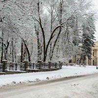 Зимний город. :: Николай Сидаш