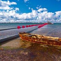 добыча песка на озере Донузлав :: Андрей Козлов
