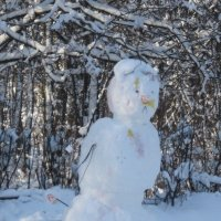 Снеговик :: Дмитрий Никитин