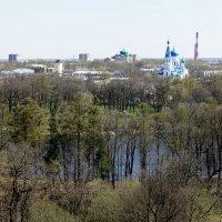 Вид на Гатчину с верхней смотровой площадки Сигнальной башни дворца :: Елена Павлова (Смолова)