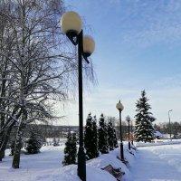 Зимний день в парке. :: Михаил Столяров