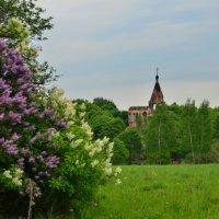 Церковь Троицы Живоночальной :: Aleksandr Ivanov67 Иванов