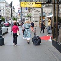 Женщина с сумкой :: Николай Танаев
