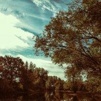 на озере :: Андрей Куницын