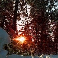 Зимний день :: Роман Дудкин