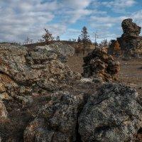 Каменные изваяния Тажеранской степи. Прибайкальский национальный парк. :: Rafael