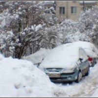 Зима :: Михаил Розенберг