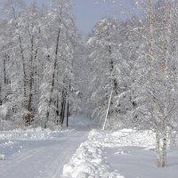 февраль :: оксана