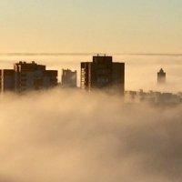 Туманный рассвет :: Светлана Марасанова