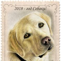 Поздравляю всех, с окончательно наступившим, годом Собаки! )) :: Елена