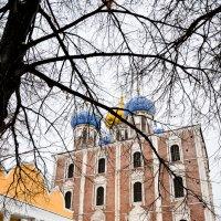 Рязанский кремль :: Олеся Семенова