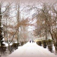 Зимний день :: Нина Бутко