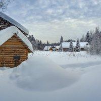 Деревни Вологодчины зимой... :: Федор Кованский