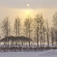 Желток солнца на зимнем небе... :: Senior Веселков Петр
