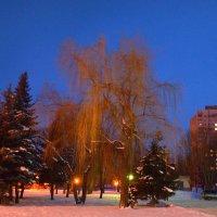 Вечерний пейзаж. :: Валентина  Нефёдова
