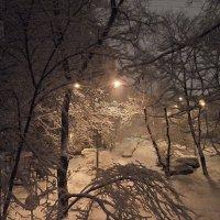 Снег идет, снег идет. К белым звездочкам в буране... :: Галина