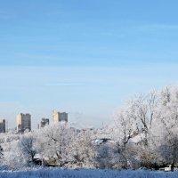 Зима в городе :: ivolga