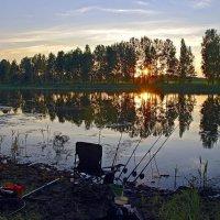 Утро. :: Валера39 Василевский.