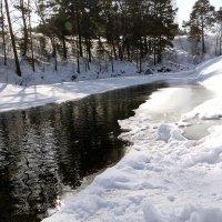 О наступающей весне. :: Елена Тренкеншу