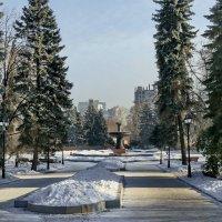 В дендропарке. :: Пётр Сесекин