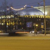 НОВАТ Новосибирск :: Екатерина