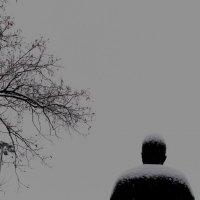Жизнь после жизни :: Tanja Gerster
