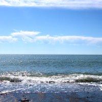Черное море :: Алла ZALLA