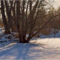 Зимний пейзаж :: Александр Максимов