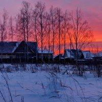 Зимним утром :: Валерий Толмачев
