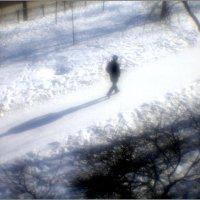 Денек погожий, идет прохожий... :: galina bronnikova