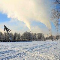 Морозный день в Парке Авиаторов... :: Sergey Gordoff