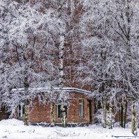 Зимние узоры :: bajguz igor
