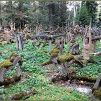 Мистический лес :: Вера
