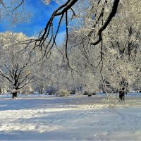 Зимнее очарование... :: Sergey Gordoff