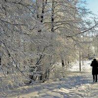 В глубине зимнего парка... :: Sergey Gordoff