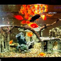 Декор с рыбками :: Нина Бутко