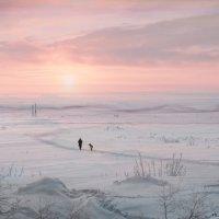 В дали безбрежной, в пустыне снежной... :: Оксана Червинская