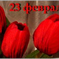 С праздником, дорогие мужчины! :: Нина Корешкова